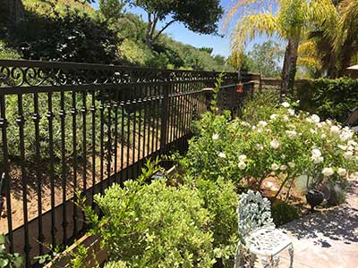 Custom Wrought Iron Fence in Back Yard